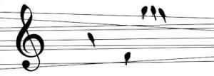 Notenlinie mit Vögeln